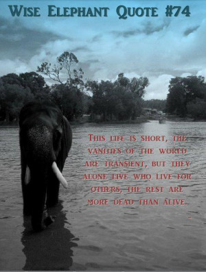 And with that I present you with Wise elephant quotes.