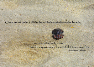 Pretty Seashell Quote Photograph