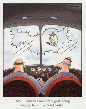 Funny military and aviation quotes or comic