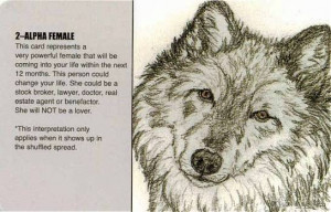Go Back > Gallery For > Wolf Spirit Quotes