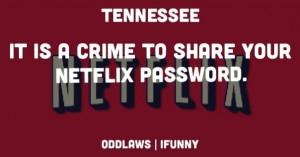 Netflix Quotes