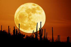 This year the Harvest Moon, the full moon closest to the time of the ...