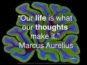 neurons-quotes-2.jpg