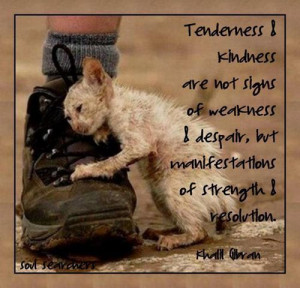 Tenderness & Kindness Are Not Signs Of Weakness & Despair, But ...
