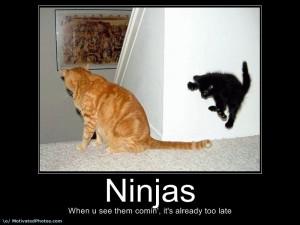 Ninja Warrior Sayings