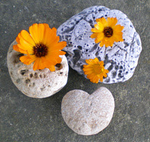 Inspirational Stones Pocket