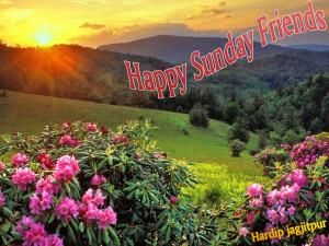 happy sunday greeting card
