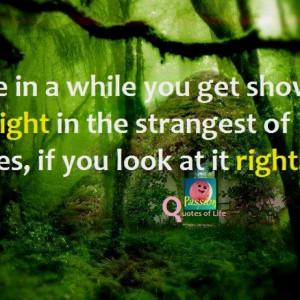Grateful Dead Love Quotes...