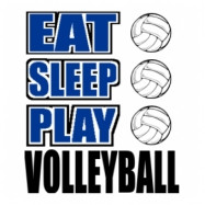 Good Volleyball Sayings Image Search Results Pictures Picture