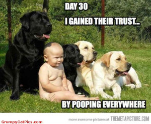 Finally Baby Found A Way To Gain The Dogs Trust Funny Captions Picture