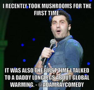 The Best Of Comedian Quotes – 27 Pics