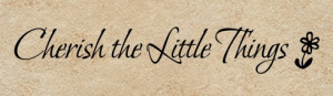 quotes general cherish the little things cherish the little things