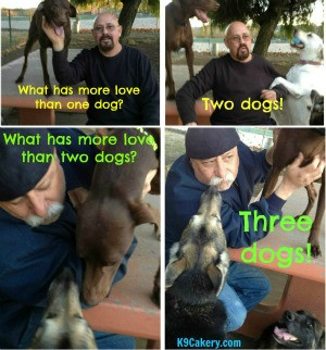 Dog quotes more love than one dog