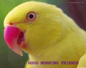 Happy Monday | Have a nice week ahead | Daily Jokes & Stories