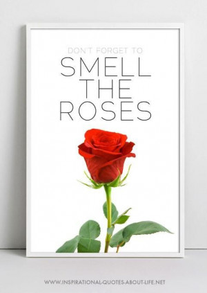 don't forget to smell the roses http://www.inspirational-quotes-about ...