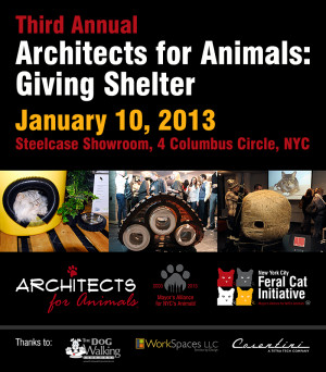 Baby, it's Cold Outside: Architects for Animals + Shelters For ...