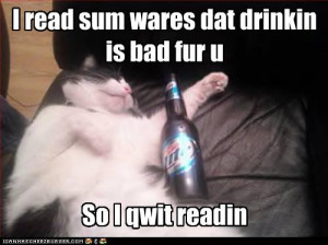 Funny-pictures-cat-is-drunk.jpg