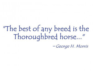 ... decal, OTTB decal, Thoroughbred decal, George Morris quote wall art