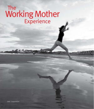 eBook: The Working Mother Experience