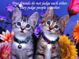 Beautiful Friendship Image Quotes And Sayings