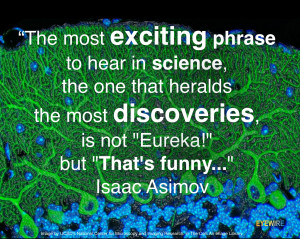 ... science, science, exciting, discovery, discoveries, that's funny