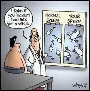All Graphics » jokes