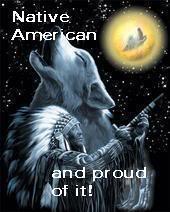 All Graphics » Native american pride