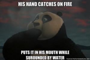 Kung Fu Panda 2 Logic