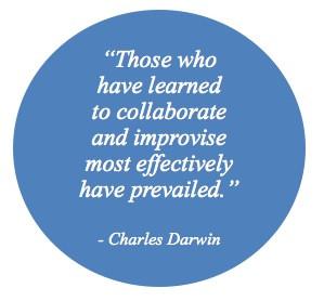 Health Care Team Collaboration