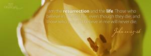 Top 5 Bible Verse Facebook Cover Timeline Photo Download Websites