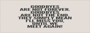 ... -they-simply-mean-i-will-miss-you-until-we-meet-again-love-quotes.jpg