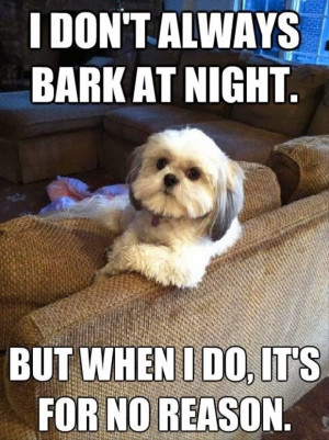 Funny Work Quotes With Dogs Quotesgram