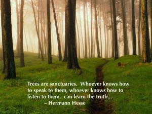 Hermann Hesse ~ Trees
