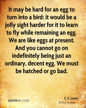 It may be hard for an egg to turn into a bird: it would be a jolly ...