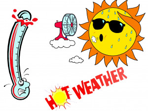 What is the usual summer high temperature where you live? 92 to 95