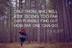 Motivational Quotes About Risk
