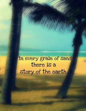 beach, holiday, palm tree, quote, quotes, sand, summer