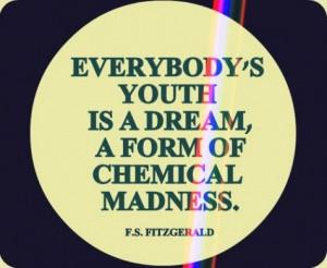 fitzgerald quote literature