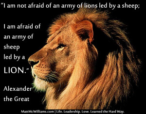am not afraid of an army of lions led by a sheep...Alexander the ...