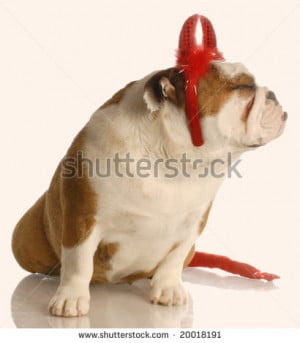 english bulldog dressed as devil making a funny face stock photo