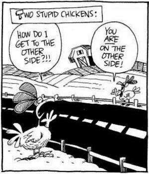 Stupid Chickens otherside understanding Very Funny Humor Cartoon Jokes