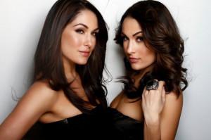 Former WWE Divas Brie and Nikki Bella issued a statement on their ...