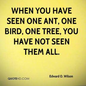 Edward O. Wilson Quotes