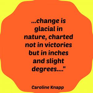 Caroline Knapp, Appetites: Why Women Want