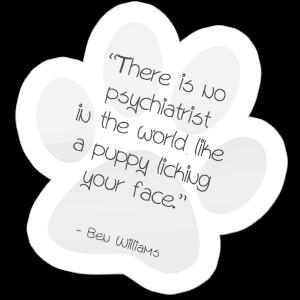 pet-quotes-paw-12