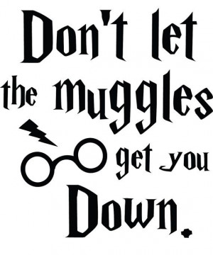 00 FREE SHIPPING! Don't let the muggles get you down Harry Potter ...
