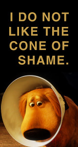 disney UP Pixar dug
