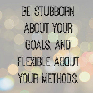 be stubborn about your goals quote