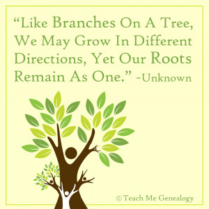 Like Branches On A Tree, We May Grow In Different Directions...