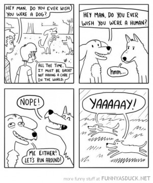 ever wished you were a dog comic funny pics pictures pic picture image ...